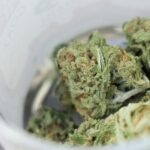 New York Senator Wants To Give Cities More Time To Ban Marijuana Businesses As Regulations Develop